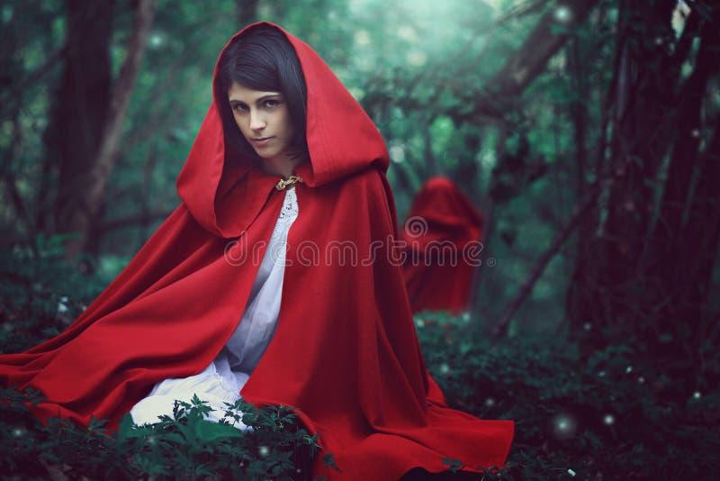 Темный - красный клобук катания в сюрреалистическом лесе стоковое изображение rf