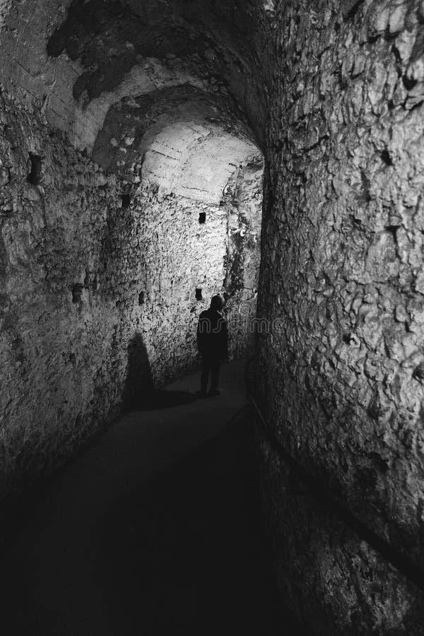 Темный путь стоковые фото