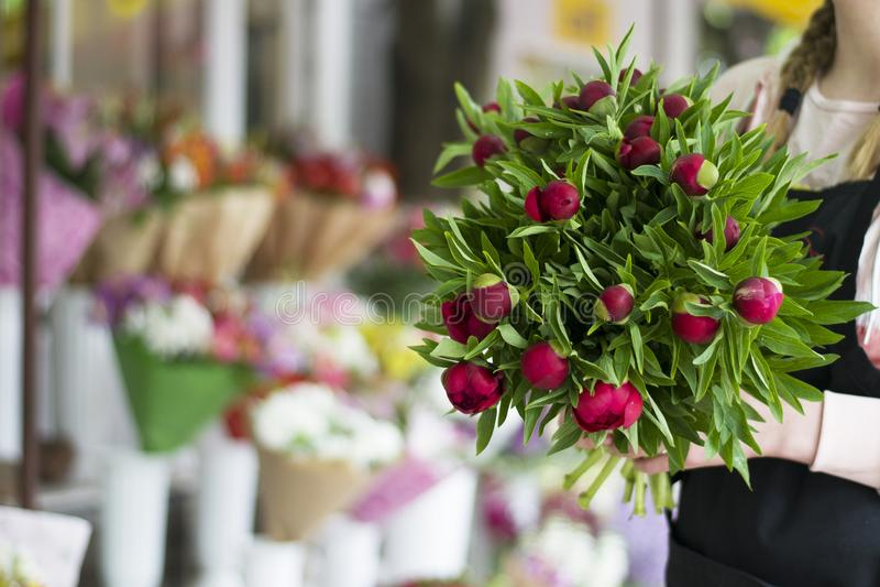 3 темных розовых пиона цветут в вазе внутри помещения just rained Букет красных пионов в руках девушки стоковые изображения