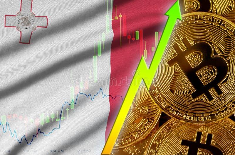 Тенденция флага и cryptocurrency Мальты растя с много золотых bitcoins иллюстрация вектора