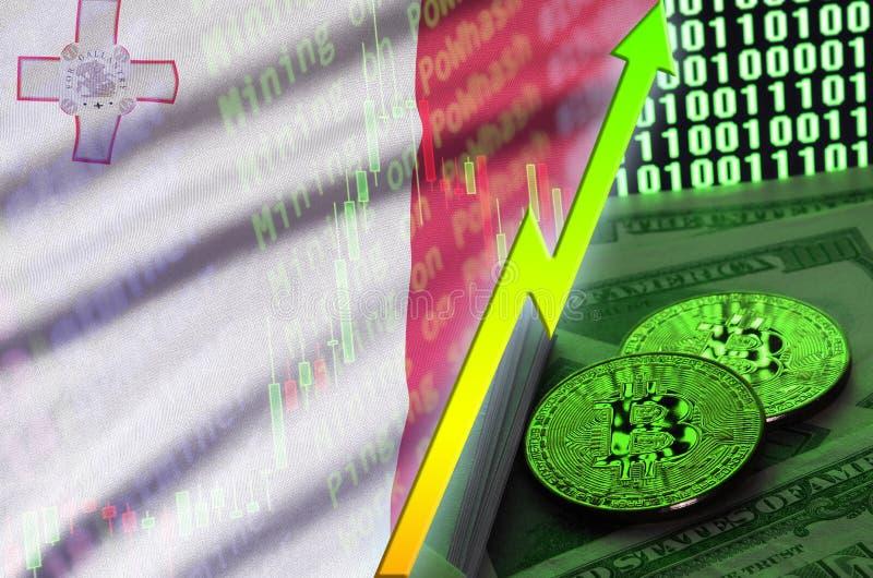 Тенденция флага и cryptocurrency Мальты растя с 2 bitcoins на долларовых банкнотах и дисплее бинарного кода бесплатная иллюстрация