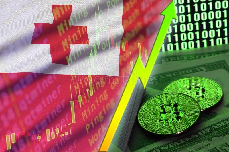 Тенденция флага и cryptocurrency Тонги растя с 2 bitcoins на долларовых банкнотах и дисплее бинарного кода бесплатная иллюстрация
