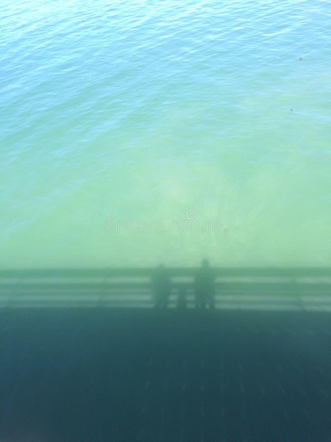 Тени на воде стоковое изображение rf