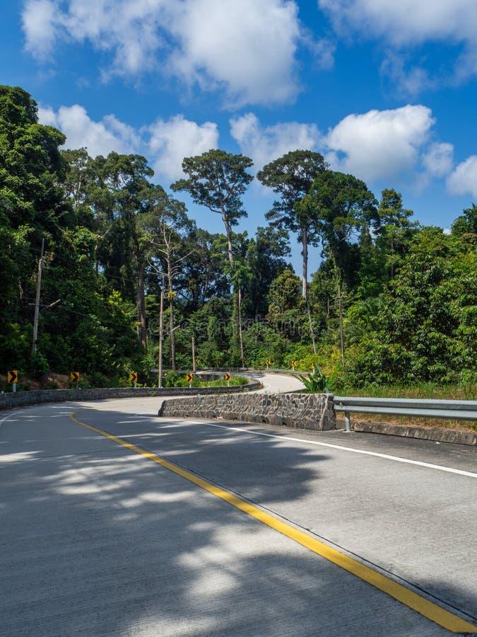 Тени от пальм на дороге острова Phangan стоковое фото