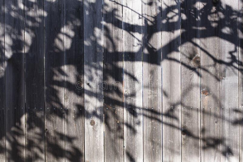 тень загородки стоковое фото