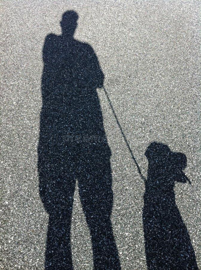 Тень идти человека и собаки стоковая фотография