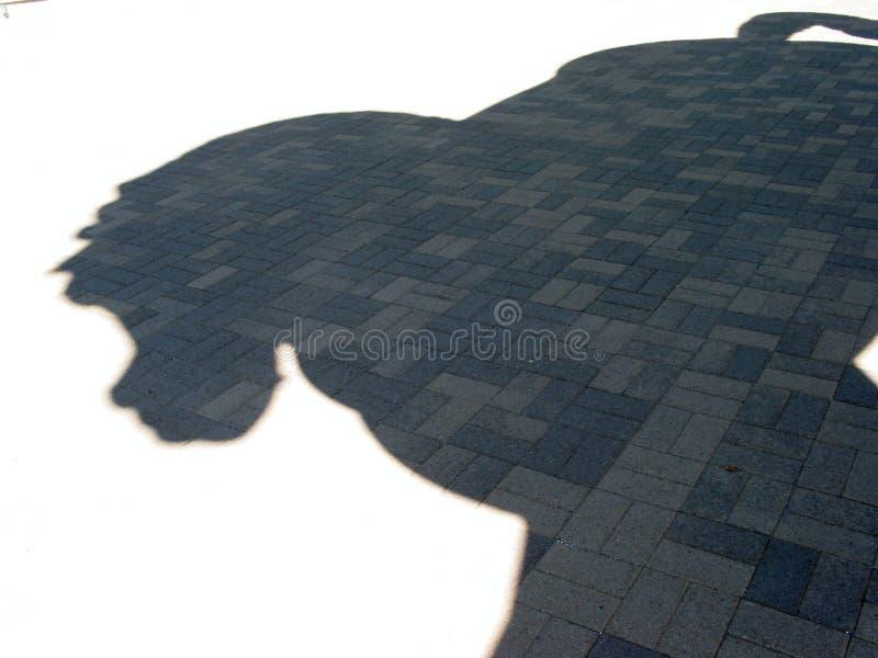 тень лошади S Стоковое Изображение RF