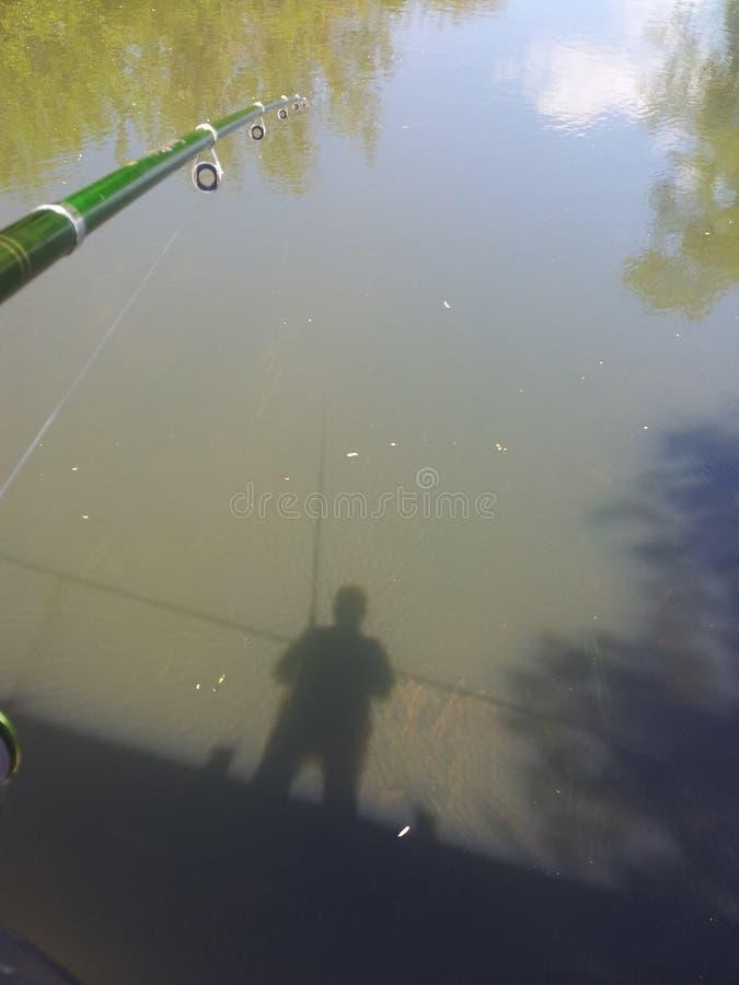Тень на воде стоковое фото