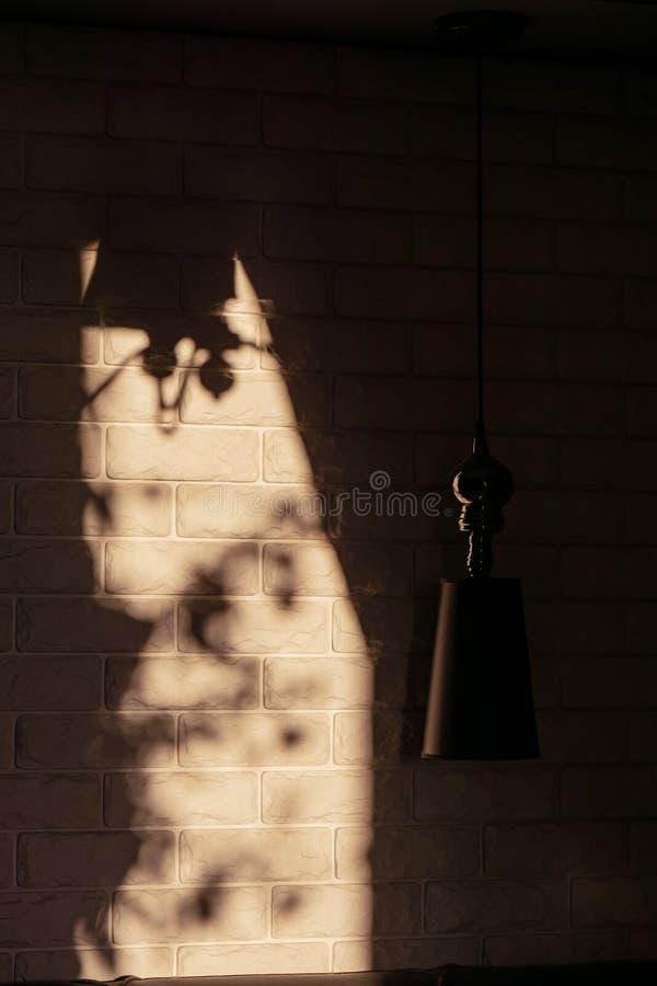 Тень от лампы на кирпичной стене стоковые фотографии rf