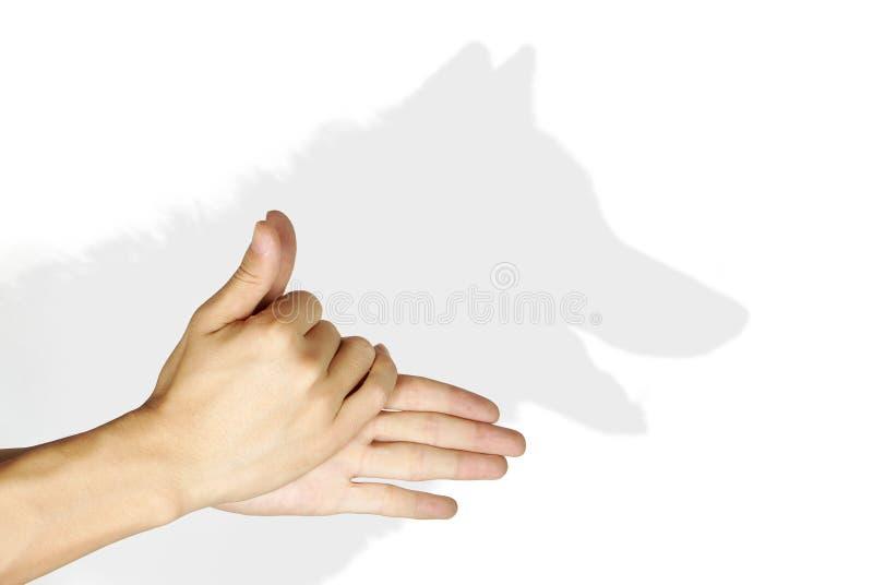 тень руки стоковое изображение rf