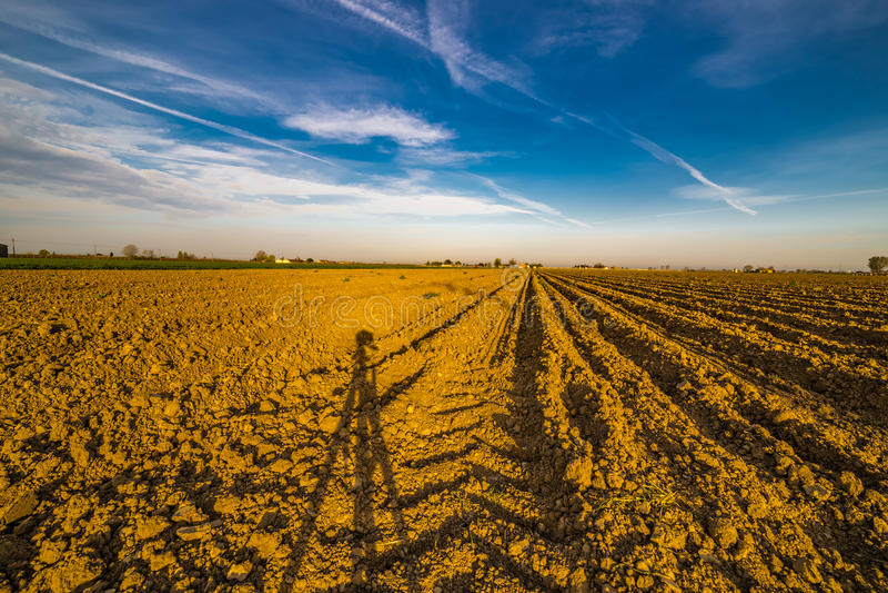 Тень треноги камеры на вспаханном поле картошки стоковое изображение rf