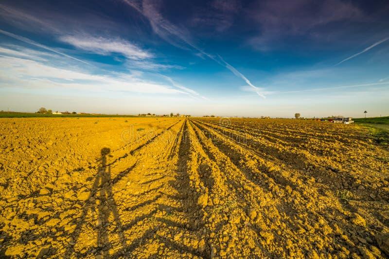 Тень треноги камеры на вспаханном поле картошки стоковые изображения rf