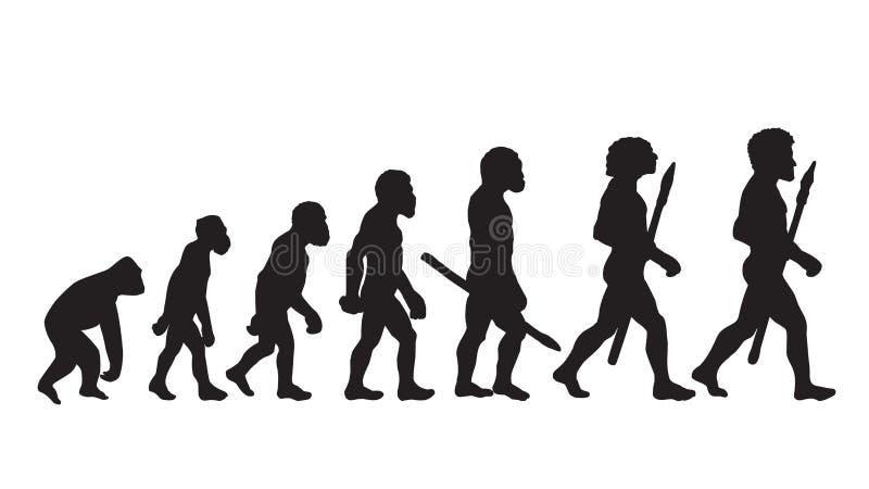 Теория развития Дарвина Определение развития Дарвина Развитие Дарвина человека иллюстрация штока