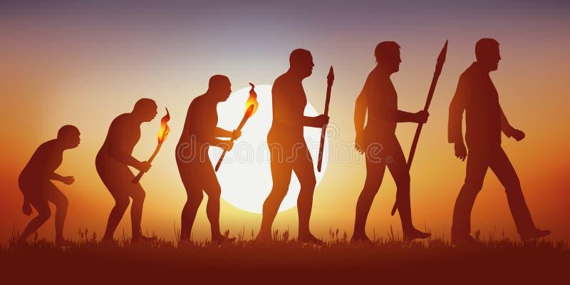Теория эволюции человеческого силуэта Дарвина иллюстрация штока