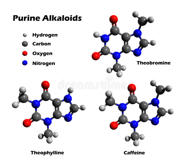 теофиллин теобромина кофеина алкалоидов иллюстрация вектора