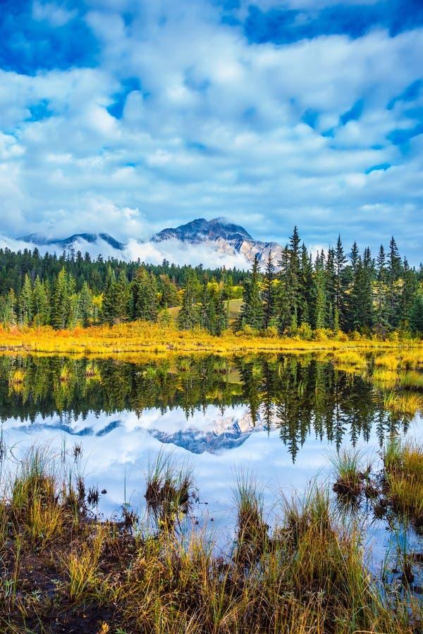 Теплая осень в парке яшмы стоковое изображение rf