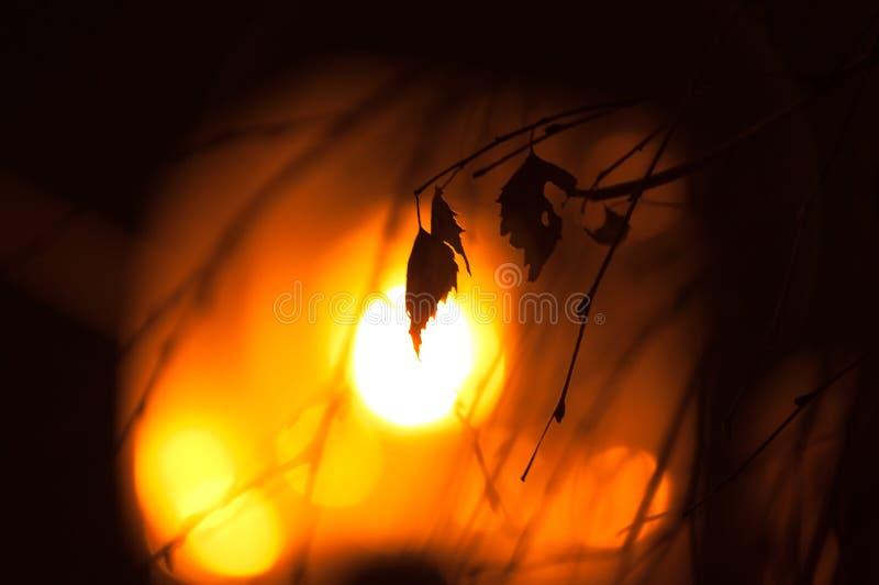 Теплые вечеры зимы Теплое настроение стоковое изображение