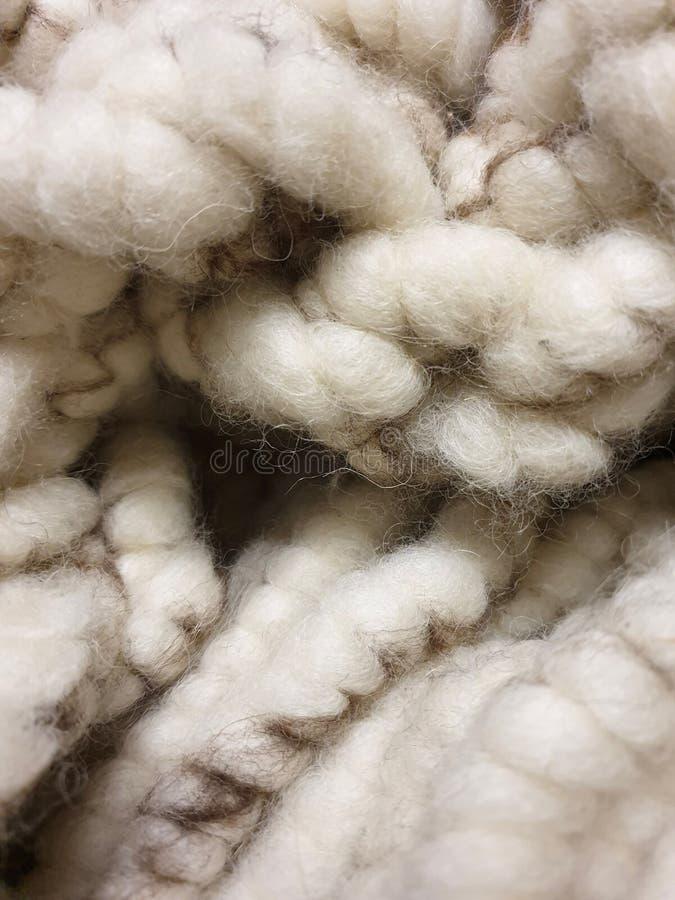 Теплый, белый, мягкий, thik в естественных цветах: шерсти овец стоковое фото rf