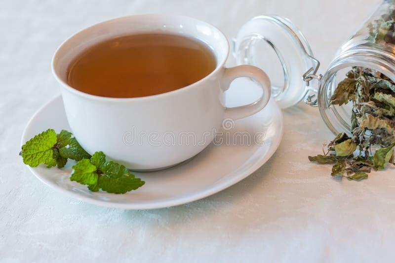 Теплый травяной чай на зимний день стоковые фото
