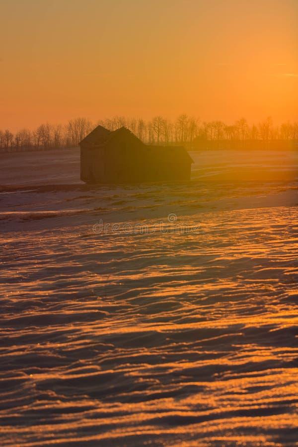 Тепло утра стоковое фото rf
