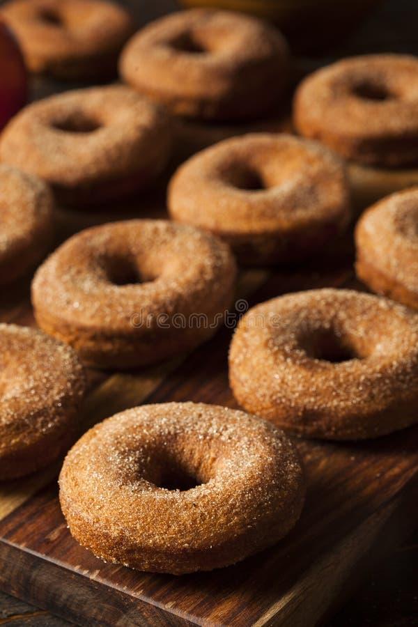 Теплые Donuts яблочного сидра стоковое фото