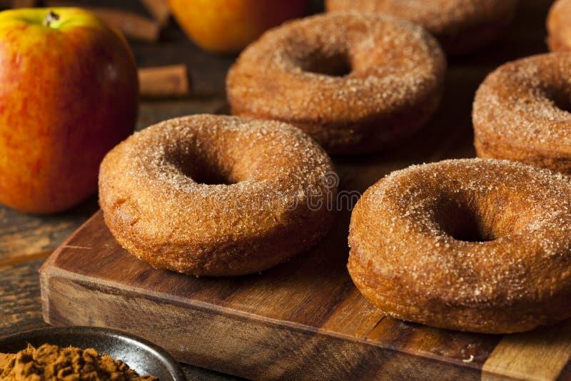 Теплые Donuts яблочного сидра стоковые фотографии rf