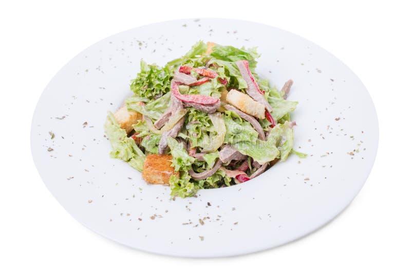 Теплый салат говядины с гренками стоковое фото