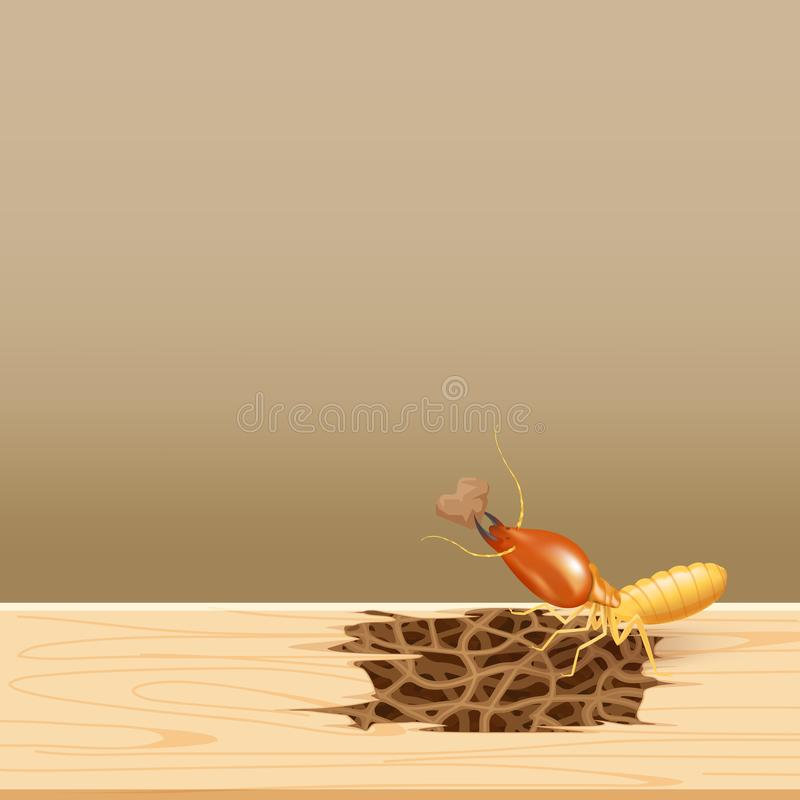 Термиты на древесине, гнезде термита на деревянной стене, термите гнезда на деревянном спаде architrave силла двери, предпосылка  бесплатная иллюстрация
