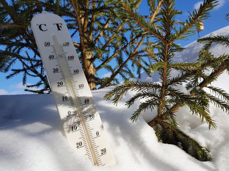 Термометр улицы с температурой Градуса цельсия и Градуса Фаренгейта в снеге рядом с молодой сосной стоковые изображения