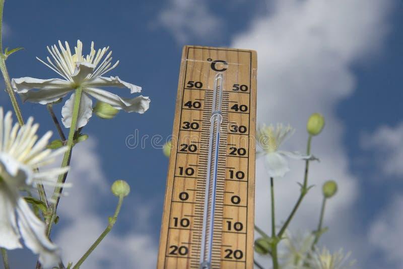 термометр стоковые фотографии rf