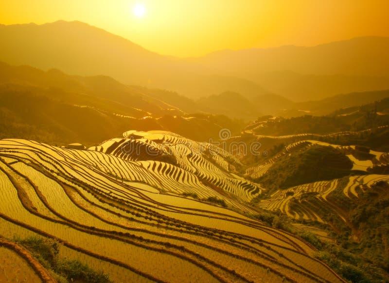 терраса восхода солнца стоковые изображения