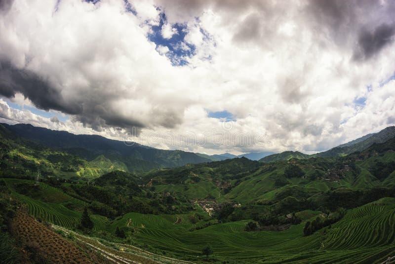 Терраса риса Longi стоковая фотография rf