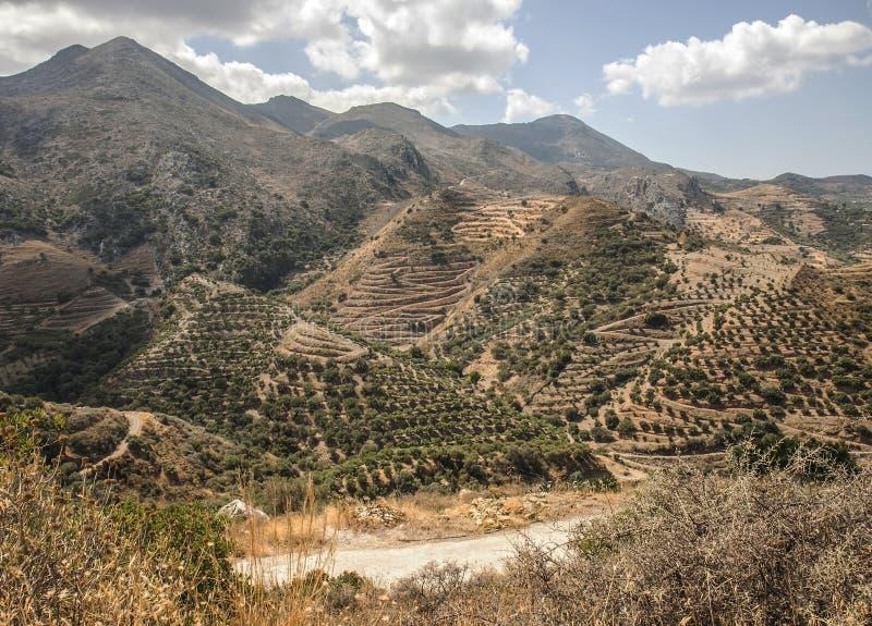 Террасные горные склоны на Polyrenia, Крите, Греции стоковое изображение