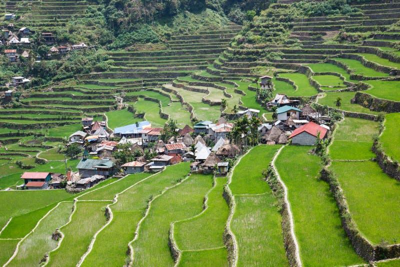 Террасы поля риса Batad, провинция Ifugao, Banaue, Филиппины стоковые фото