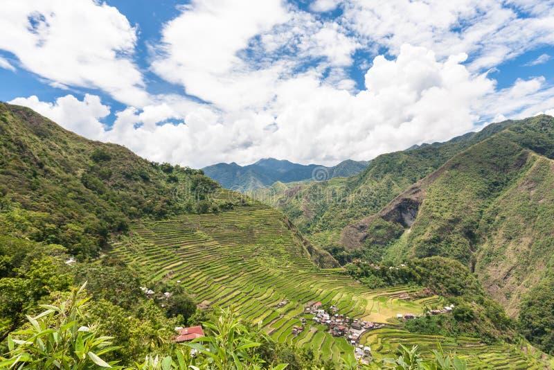 Террасы риса Banaue в Филиппинах стоковая фотография