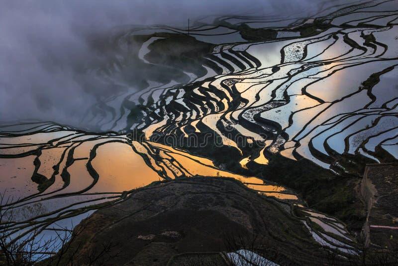 Террасы Honghe Hani стоковые фото