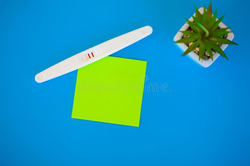 Тест на беременность результат положителен с 2 прокладками Обработка неплодородности с пилюльками, помощи в понимать ребенка стоковые изображения rf