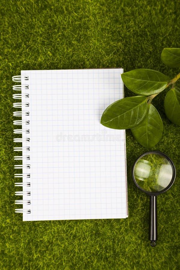 Тетрадь, увеличитель и листья зеленого цвета на траве стоковые фотографии rf
