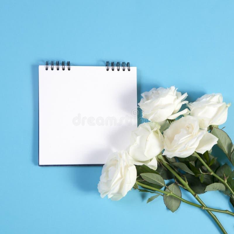 Тетрадь на веснах с белой розой на голубой предпосылке с пустым космосом для примечаний стоковые изображения