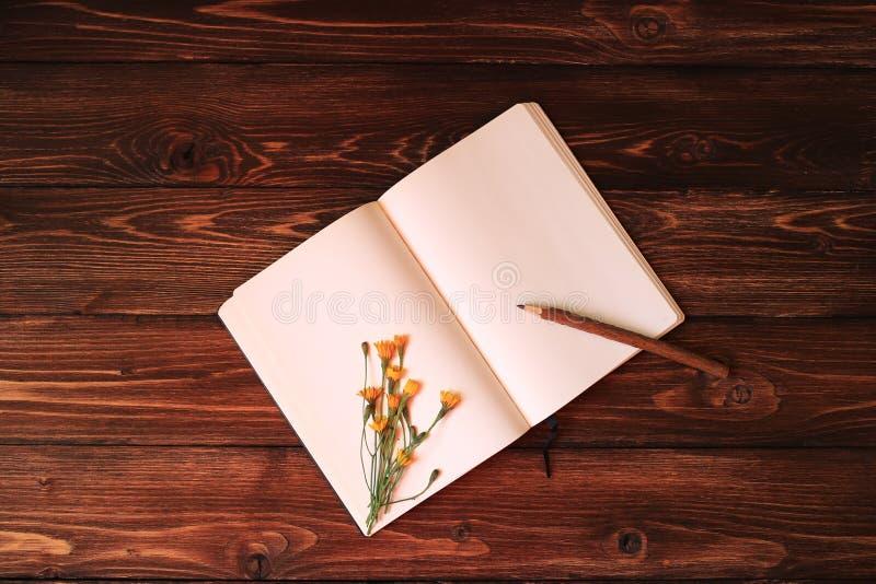 Тетрадь пробела открытая, деревянный карандаш и одуванчик на деревянной предпосылке стоковое фото rf