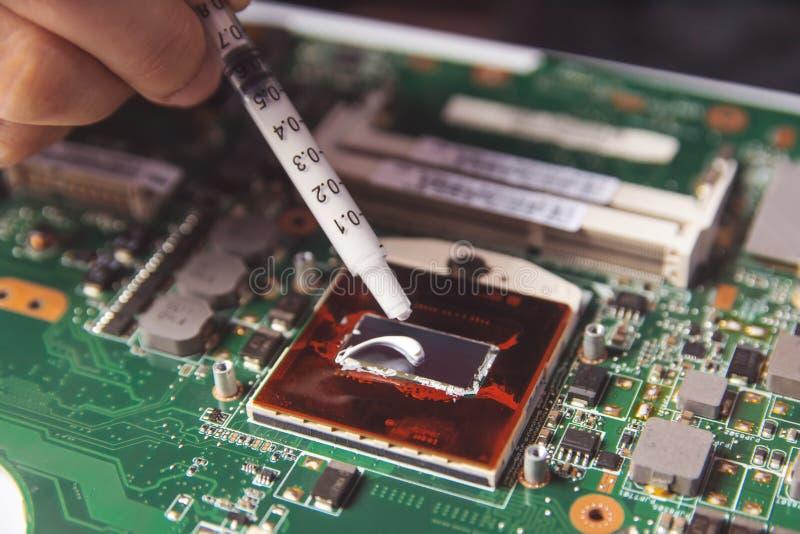 Техник прикладывая термальный затир со шприцем на процессоре C.P.U. на ноутбуке материнской платы стоковые фотографии rf