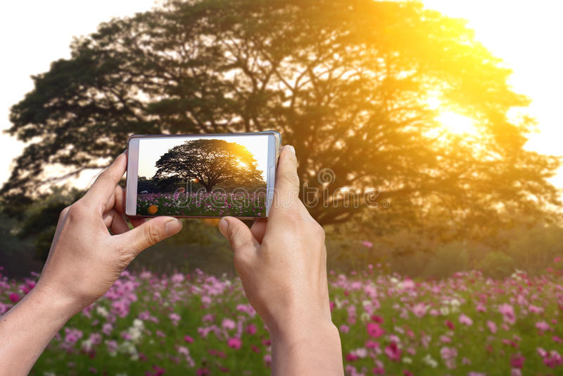 Технология делает фотографирующ легкий с телефоном камеры стоковое изображение rf