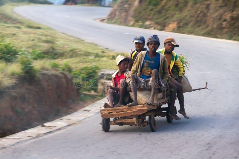 Тележка Мадагаскара стоковые изображения