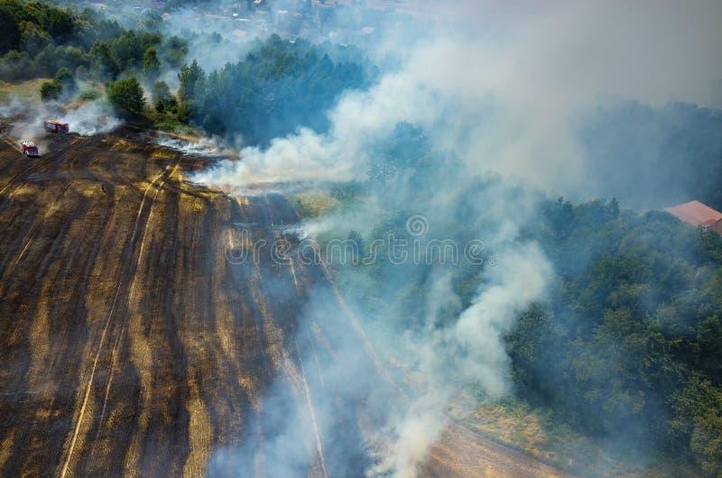 Тележка пожарного работая на поле на огне стоковое изображение rf