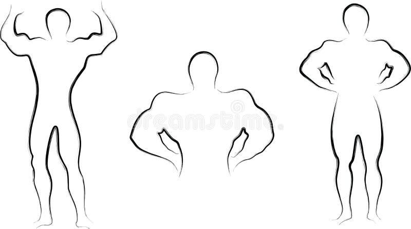 Тело строения иллюстрация штока