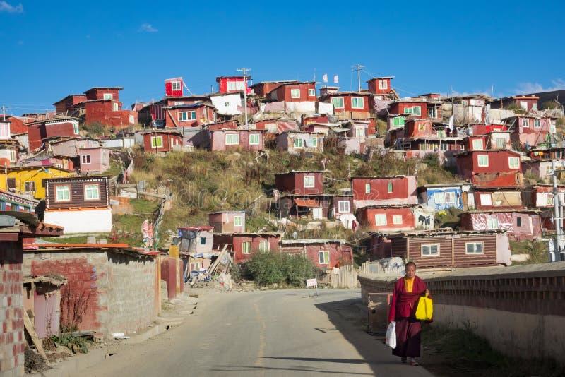 тибетец стоковые изображения