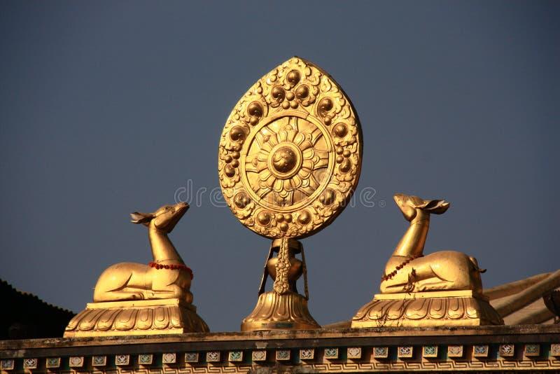 Тибетские буддийские олени стоковое фото rf