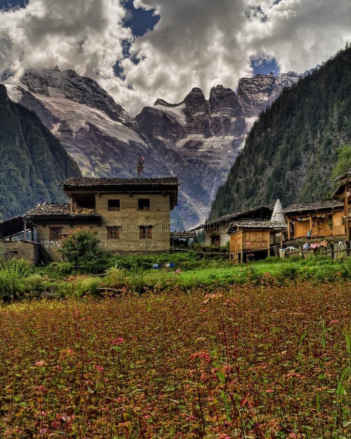 Тибетские дома с горой в предпосылке стоковая фотография rf