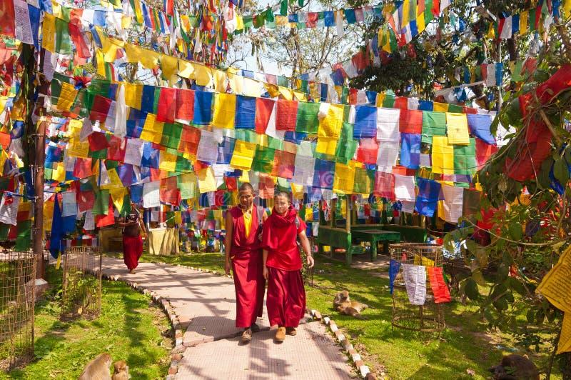 Тибетские монахи, Darjeeling стоковые фото