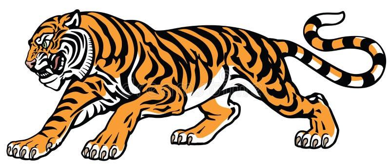 тигр в агрессивном атакуя представлении иллюстрация штока